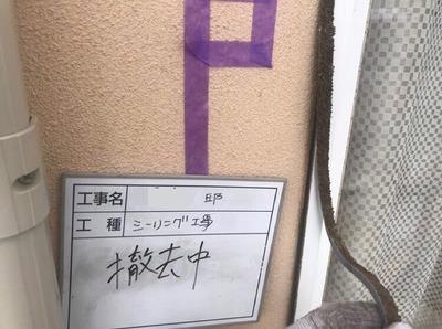 シーリング撤去.jpg